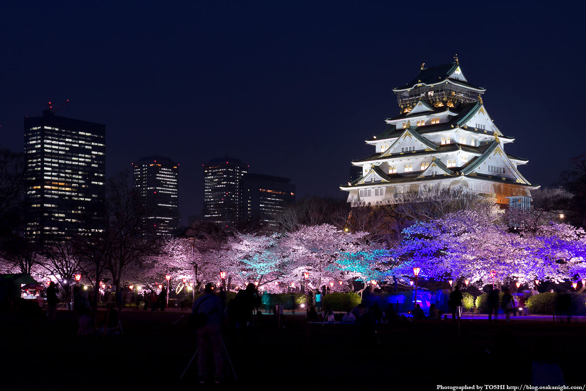 Qual è la storia del castello di Osaka