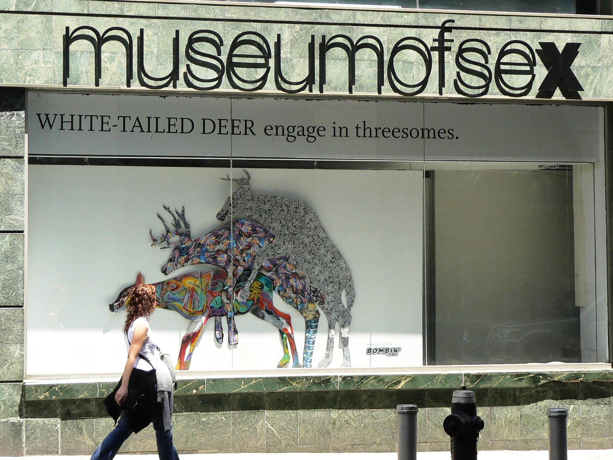 Come arrivare al Museo del sesso a New York