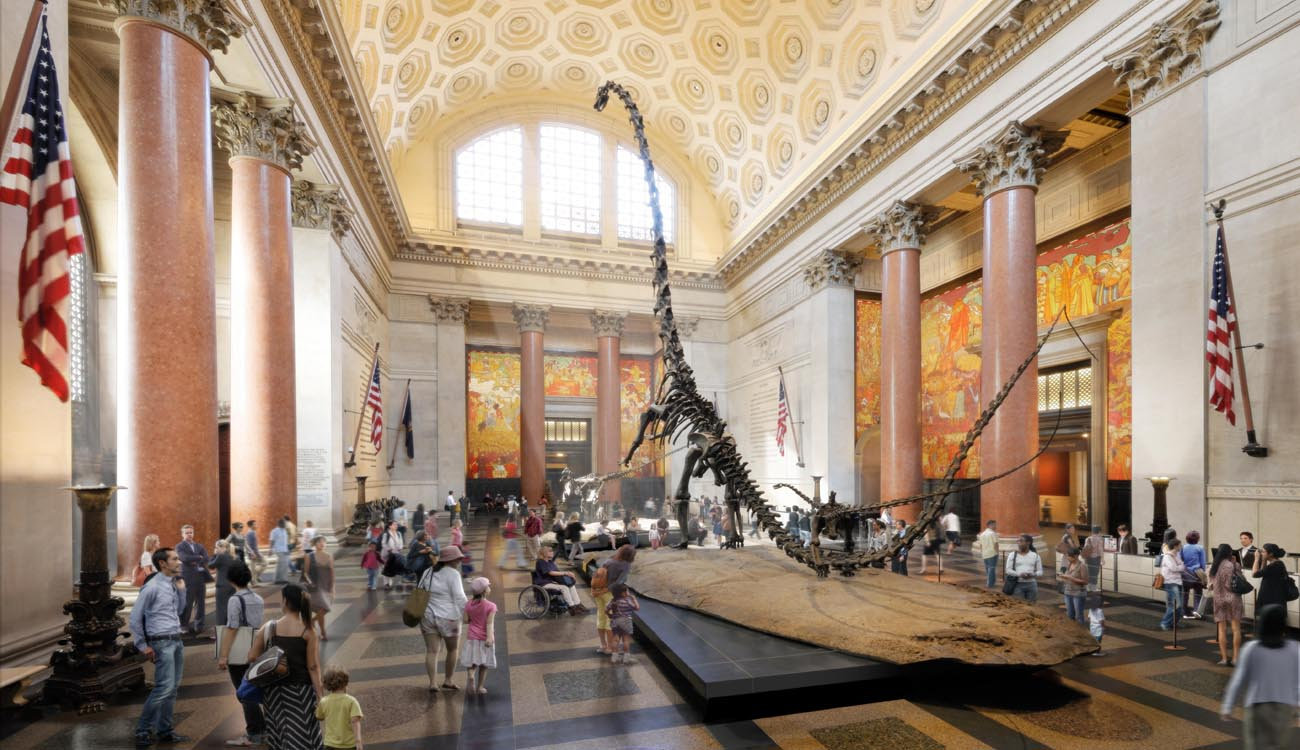 Cinque musei da visitare a new york viaggiamo for Una storia ospita vicino a me