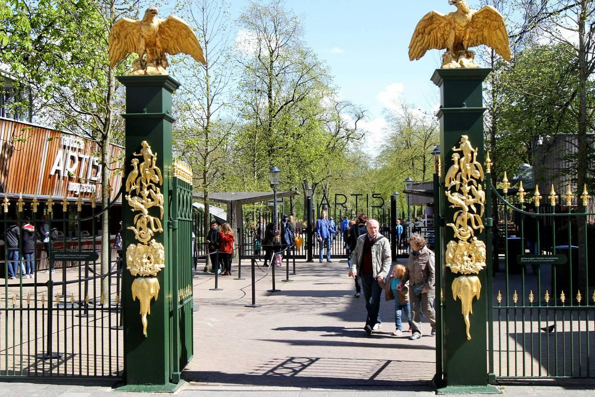 Orari e prezzi biglietti Artis Zoo di Amsterdam