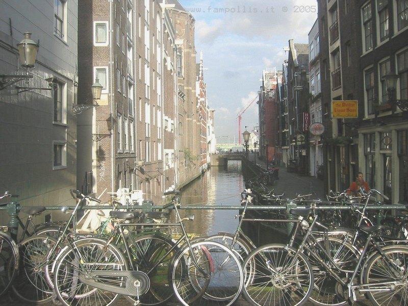Quali sono le migliori piste ciclabili in Olanda?