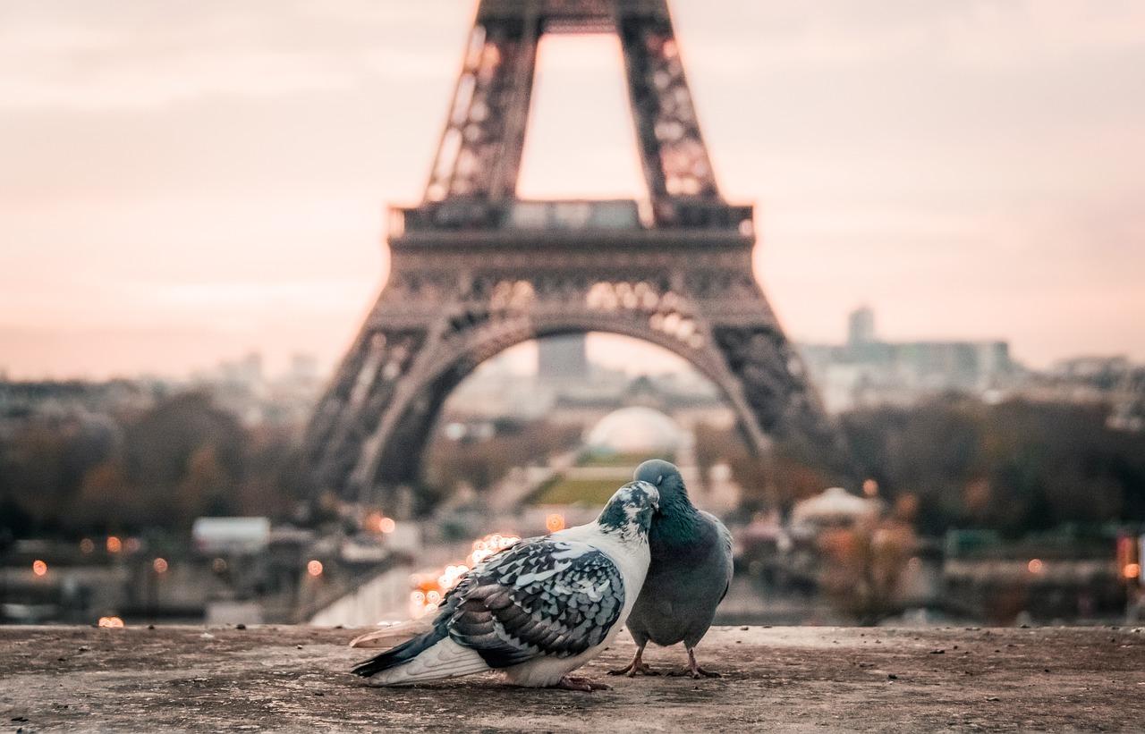 che cosa fare a san valentino a parigi