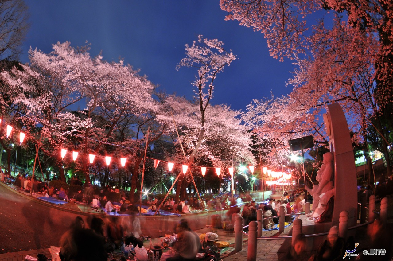 Che cosa fare a Tokyo a Pasqua