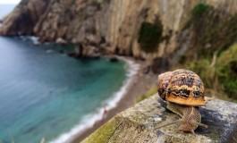 Il sogno nazionale dei blogger del turismo e dei viaggi in Cantabria