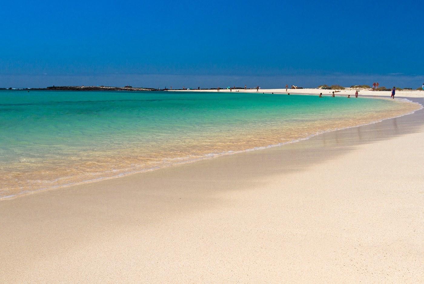 Qual è la temperatura acqua Fuerteventura nel mese di agosto