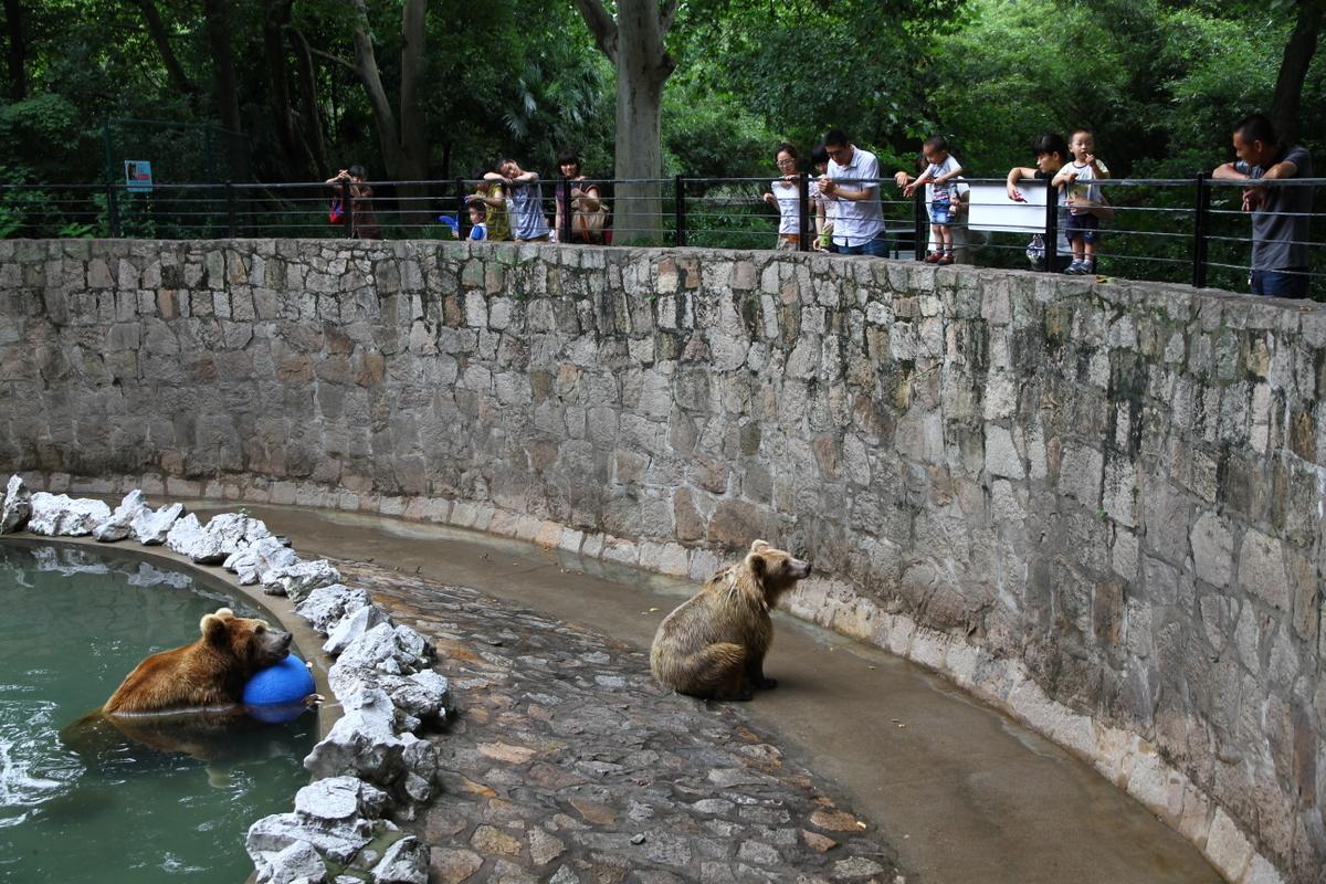 Qual la fermata metro per zoo di londra viaggiamo for Quanto costa 10000 piedi quadrati