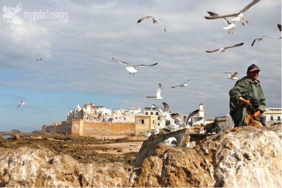 Essaouira: il paradiso Atlantico