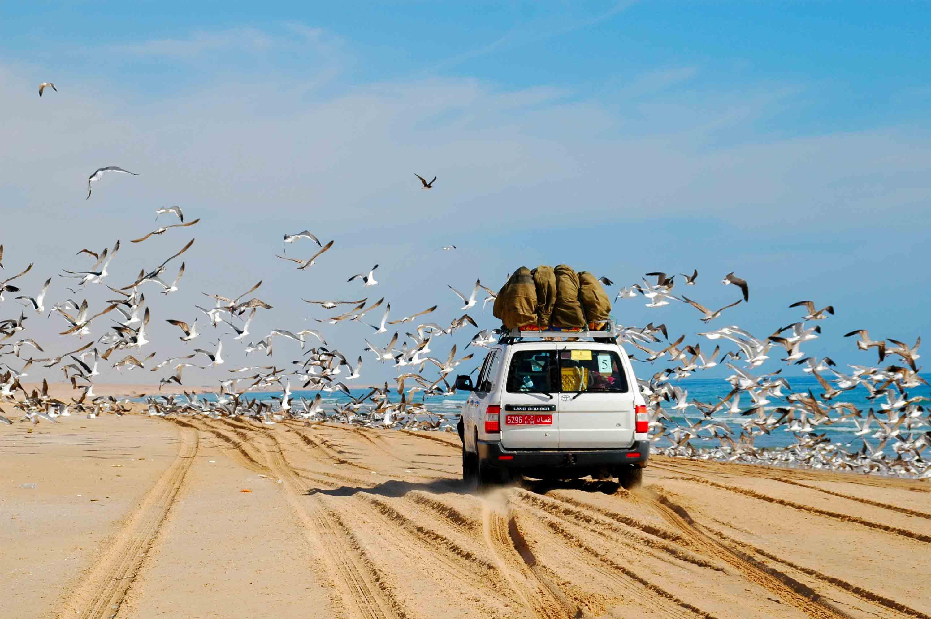 Stampa le fotografie dei tuoi viaggi dove vuoi in modo creativo