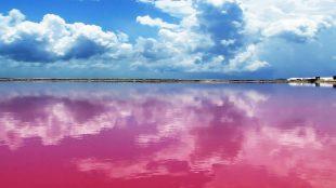 Laguna rosa a Las Coloradas, nella penisola dello Yucatan, in Messico