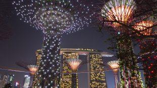 Garden by the Bay Singapore: costi, orari e come arrivarci