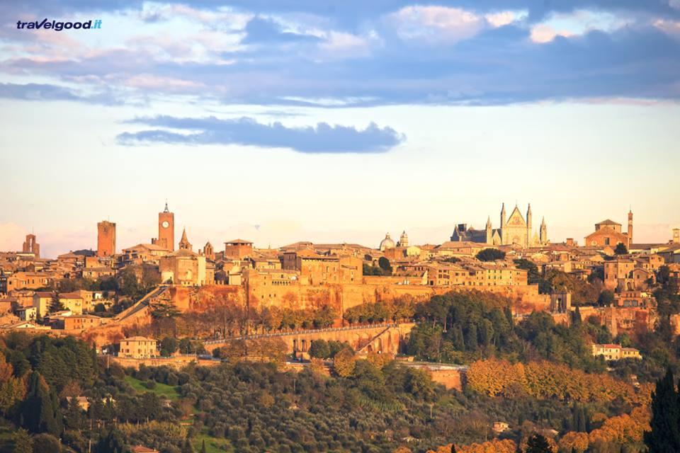 Cosa vedere e luoghi da visitare ad Orvieto