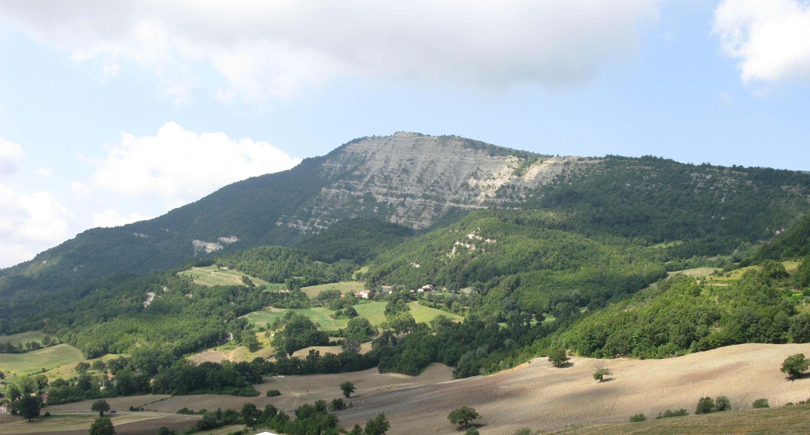 Monte Carpegna II