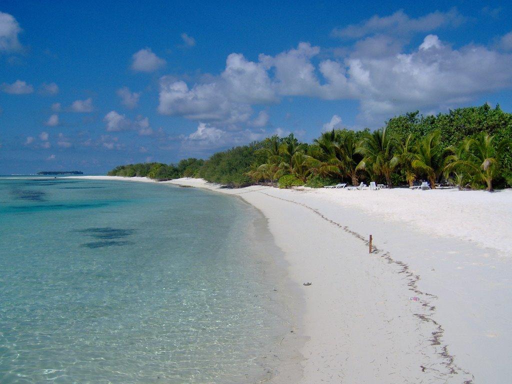 Isole Maldive: quando andare e dove alloggiare