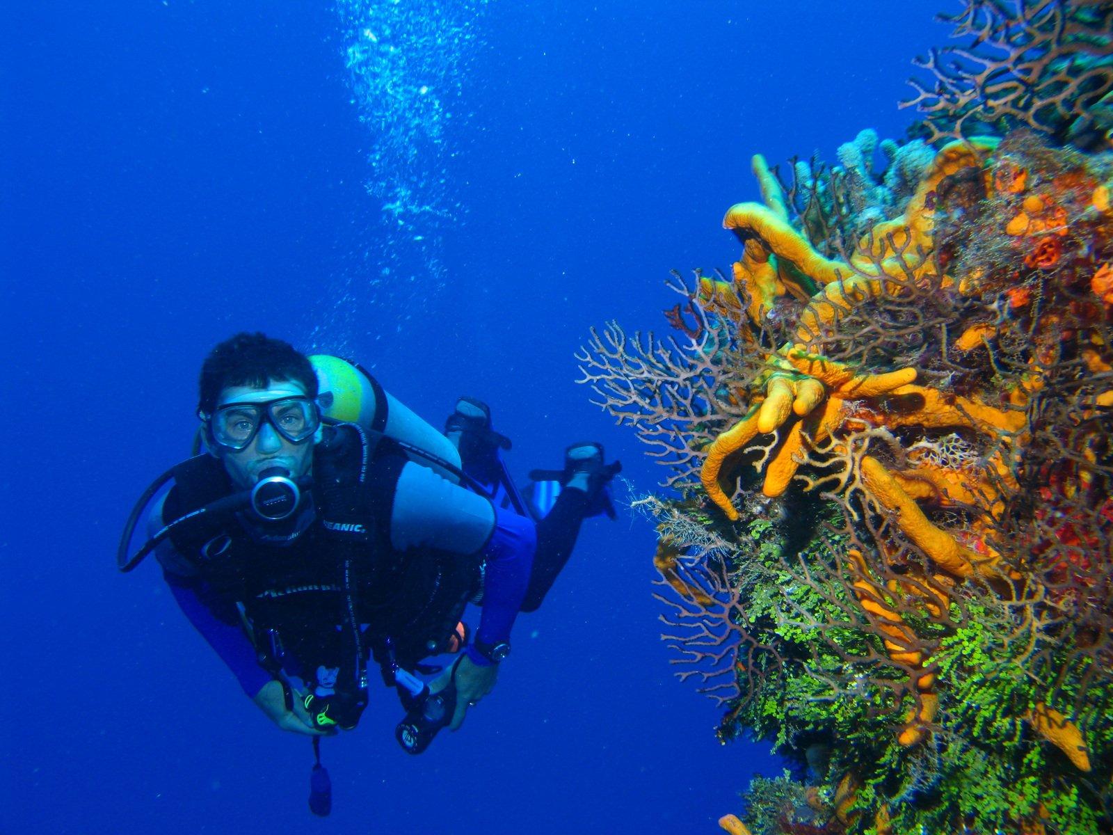 muta subacqueo