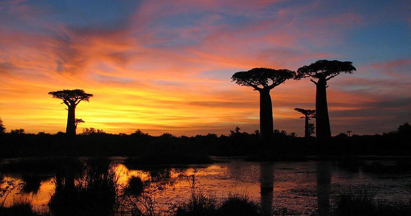 Madagascar clima