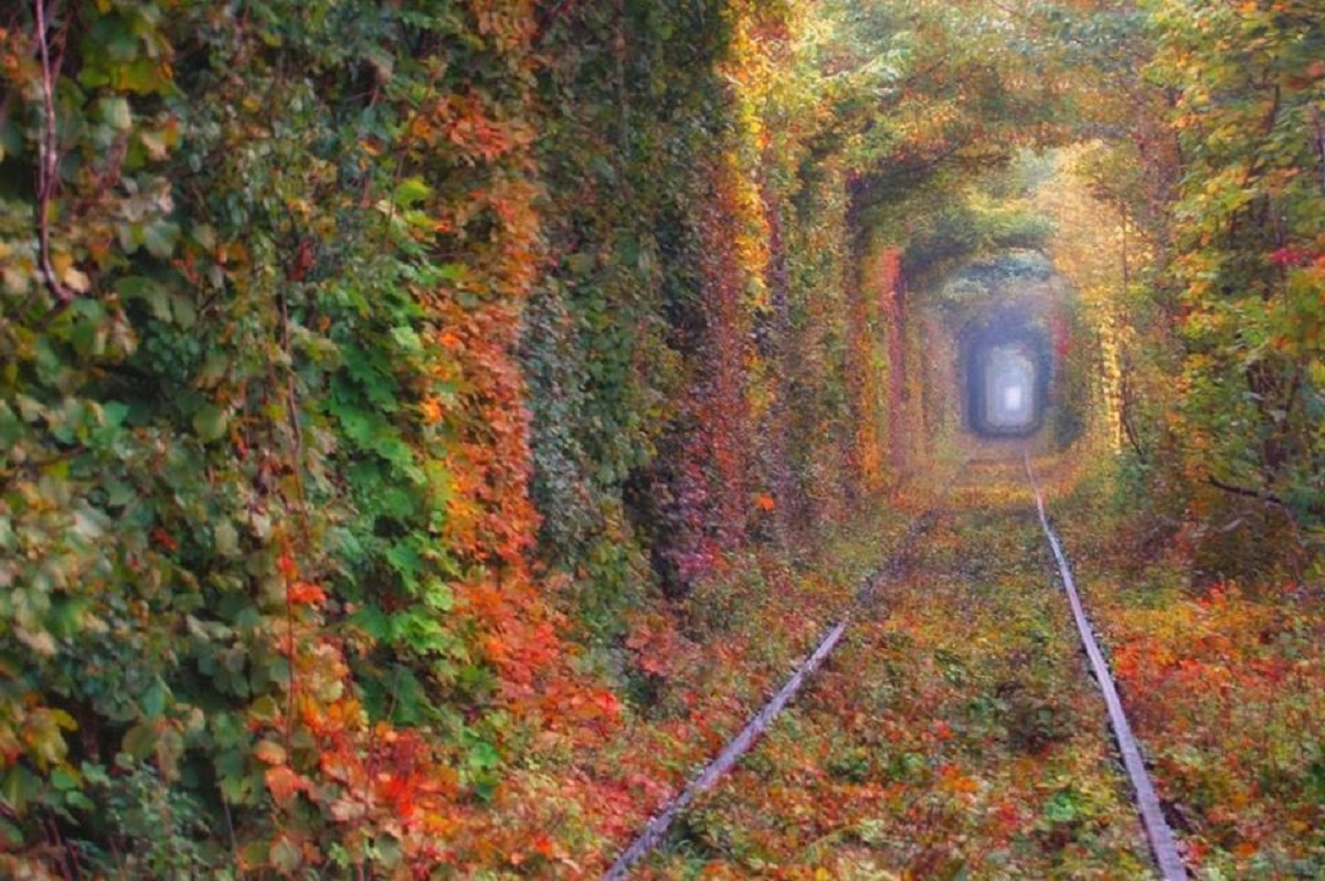 tunnell dell'amore