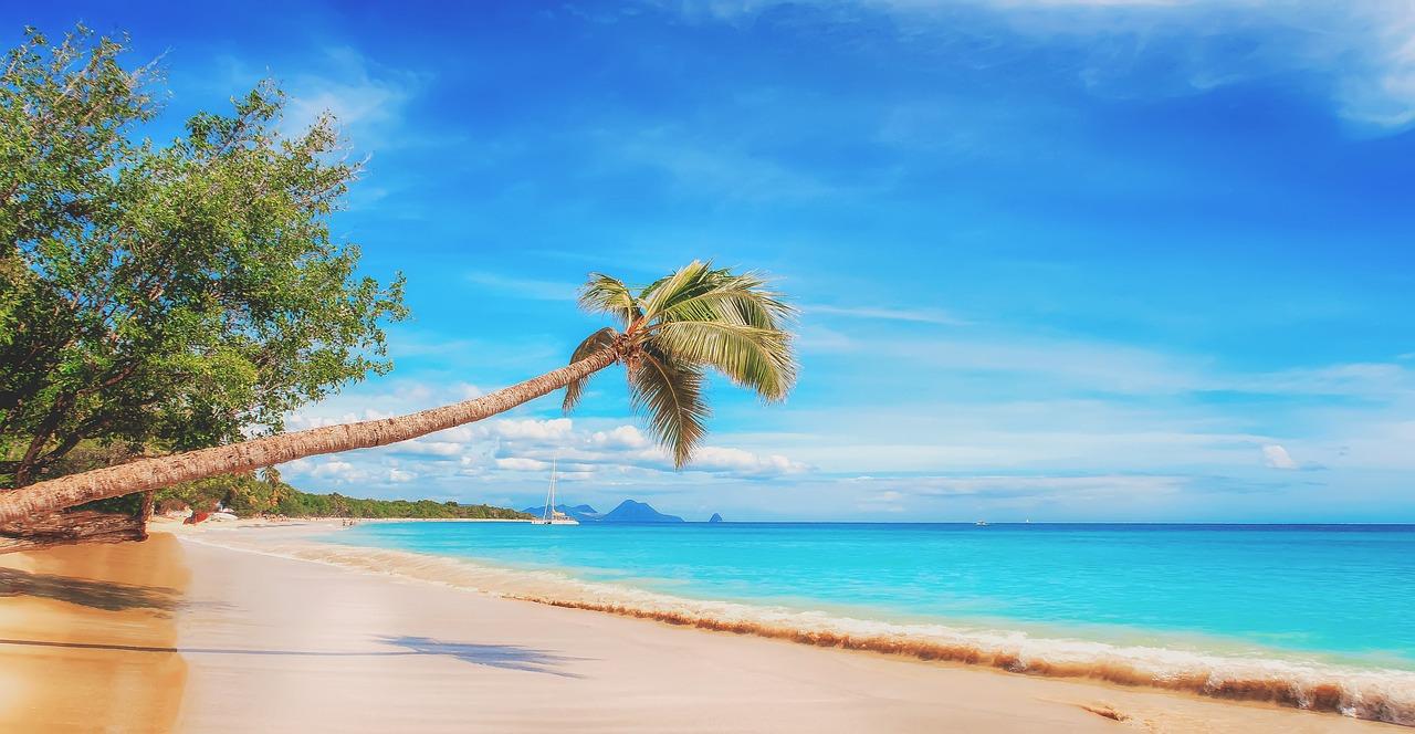 beach 2528635 1280