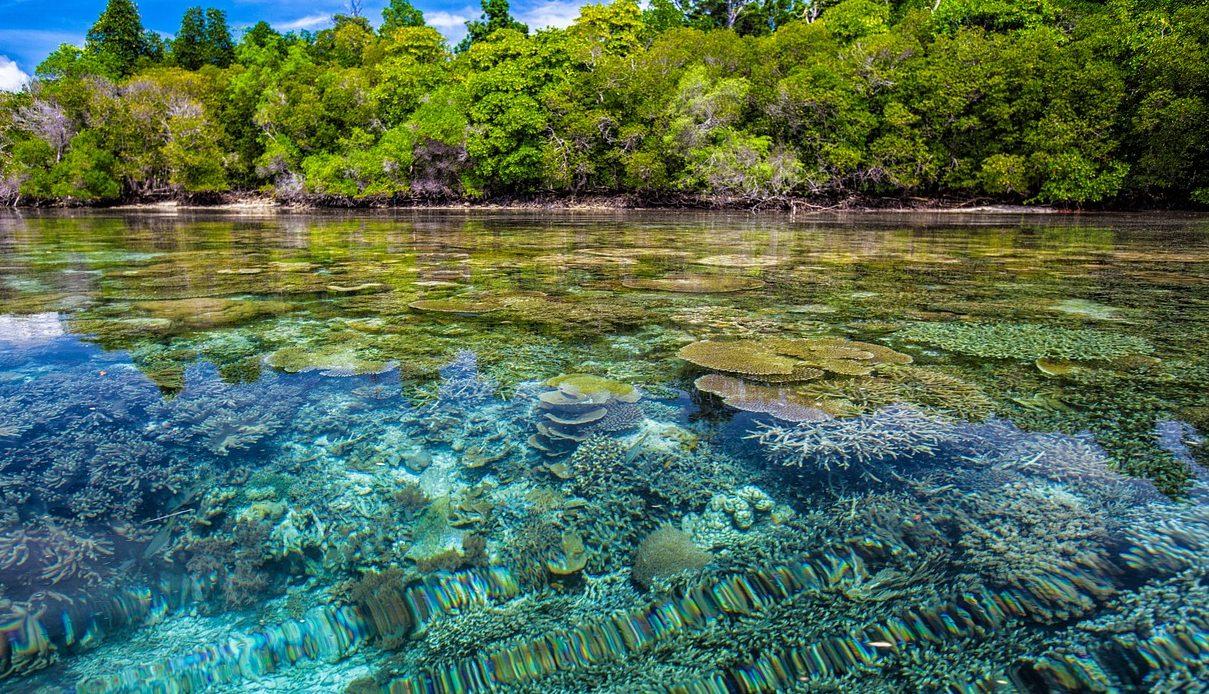 isola di moyo