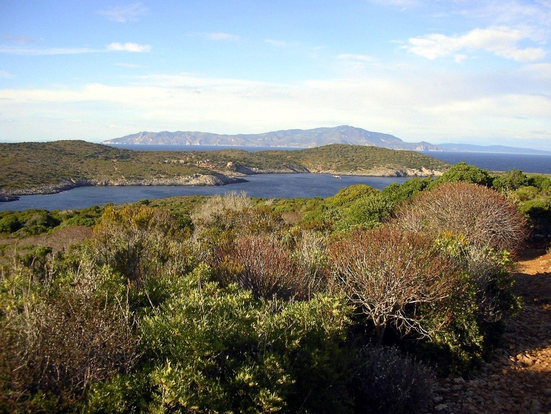 Giannutri, l'isola più selvaggia dell'arcipelago toscano
