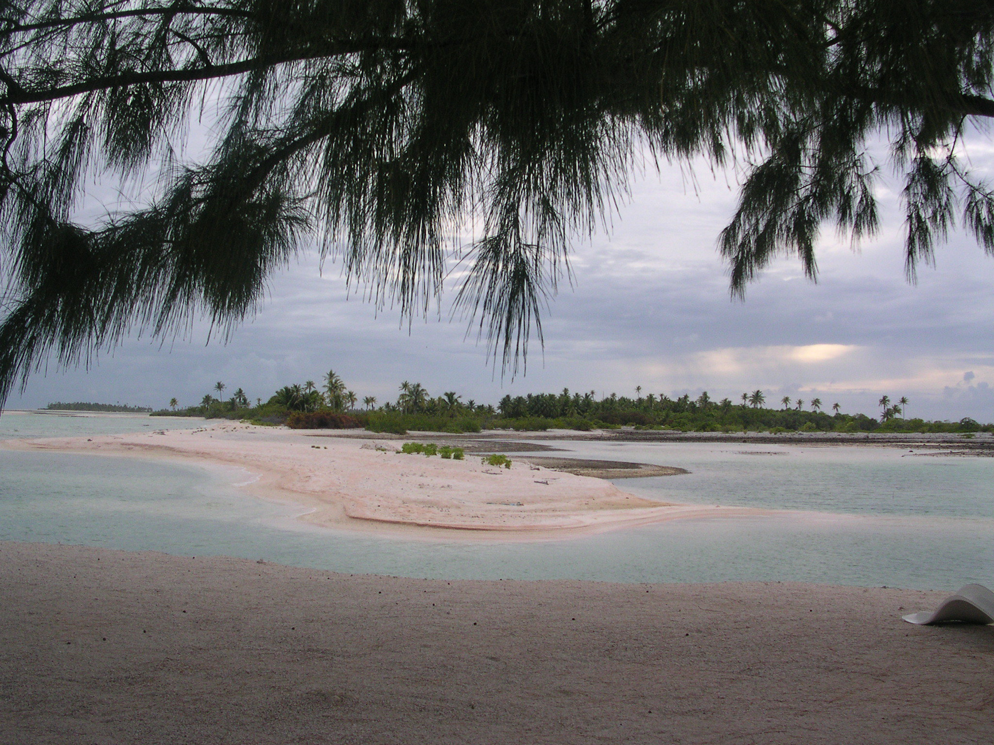 polinesia spiaggia rosa