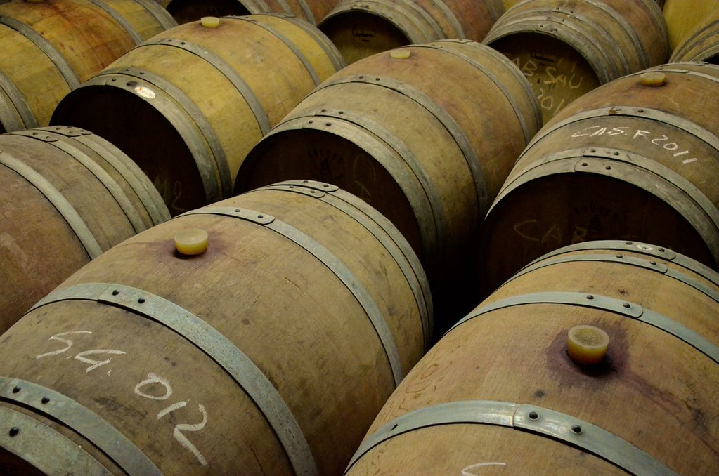 degustazioni vini toscana