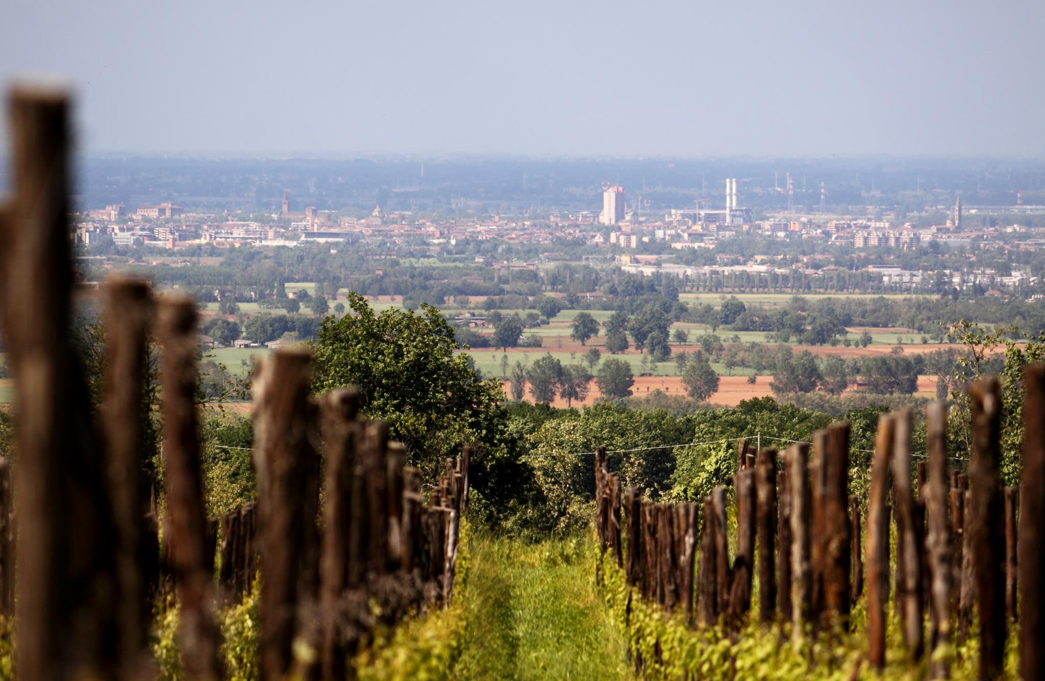 Mete Piacenza, dove andare nella città romagnola