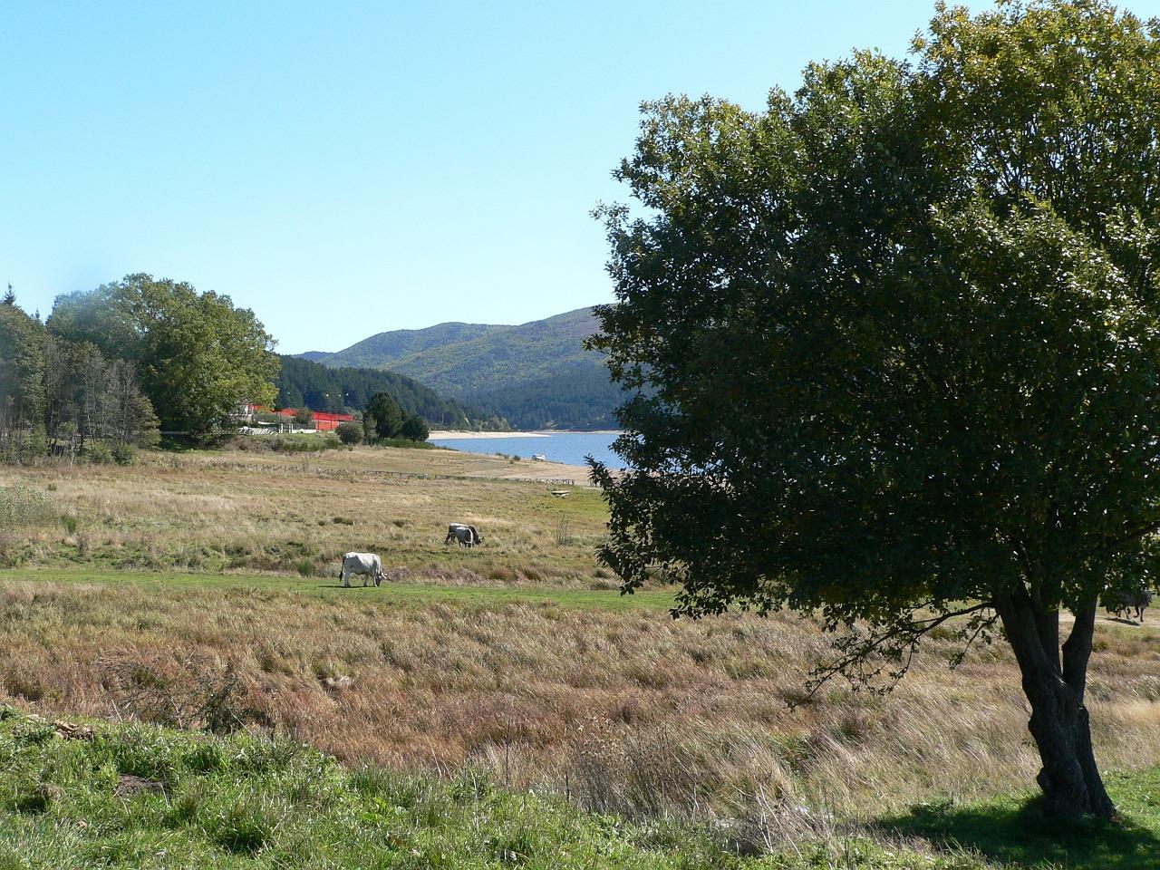 Parco Nazionale della Sila autunno