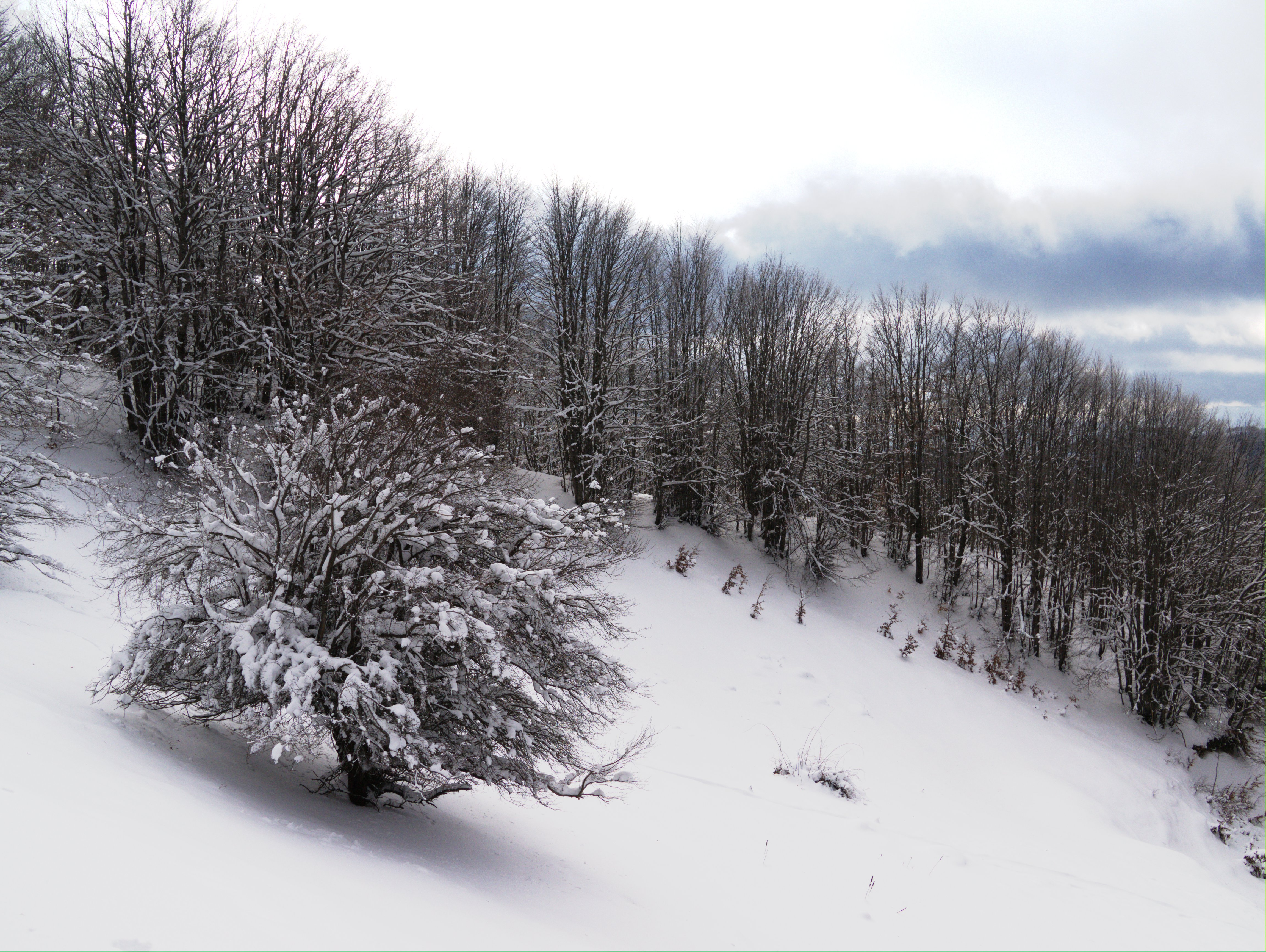 Piste da sci Calabria