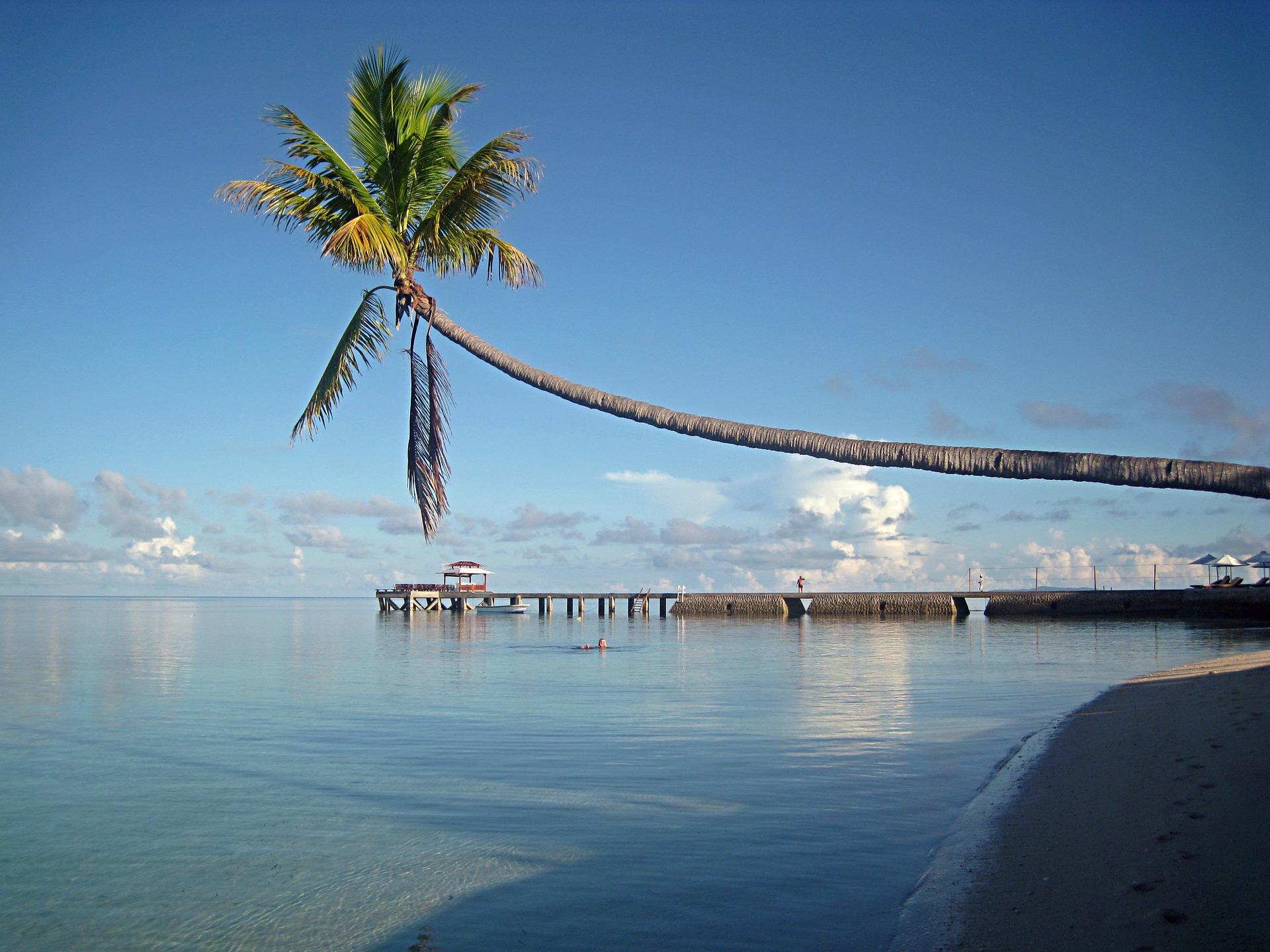isole wakatobi indonesia: