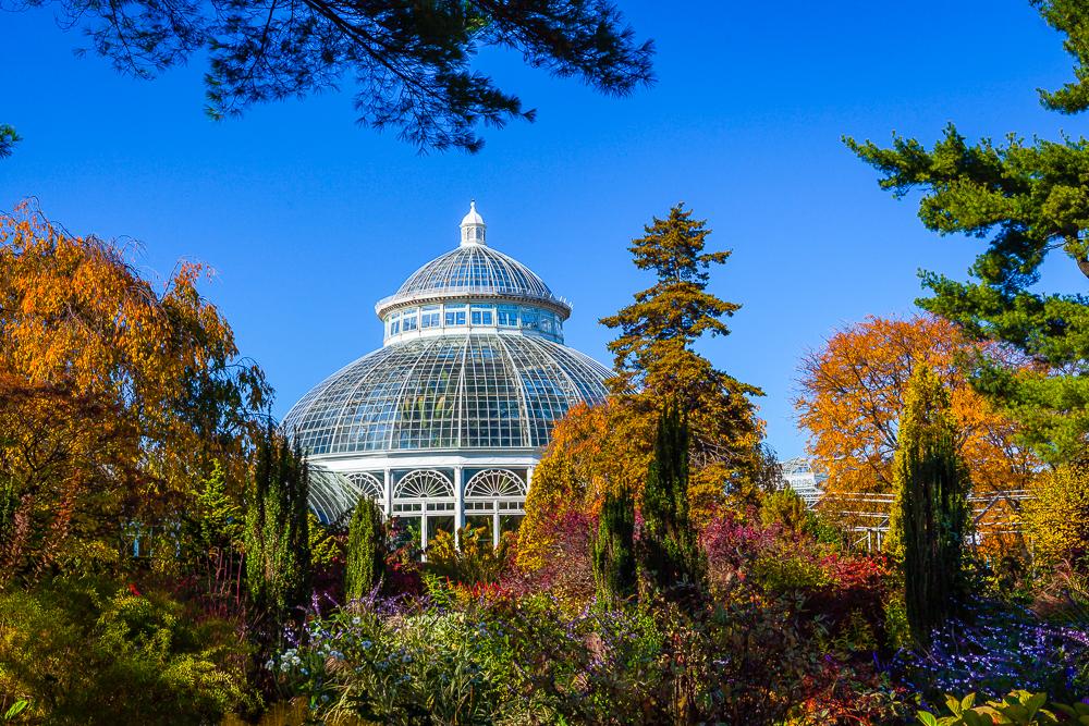 Giardino Botanico New York:
