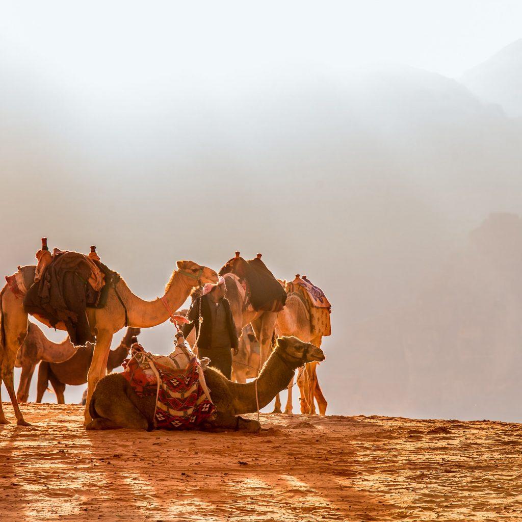 avventure nel mondo viaggio in giordania