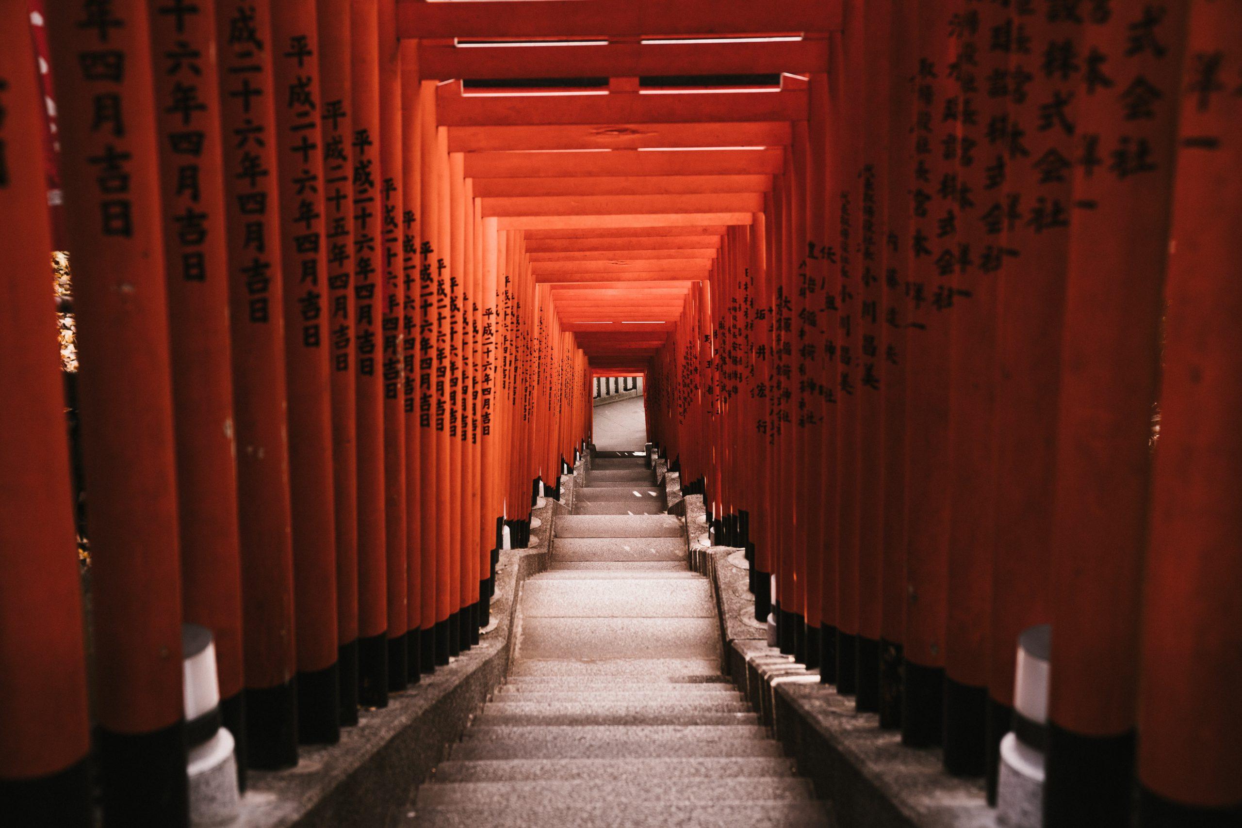 Tokyo cosa vedere in 5 giorni
