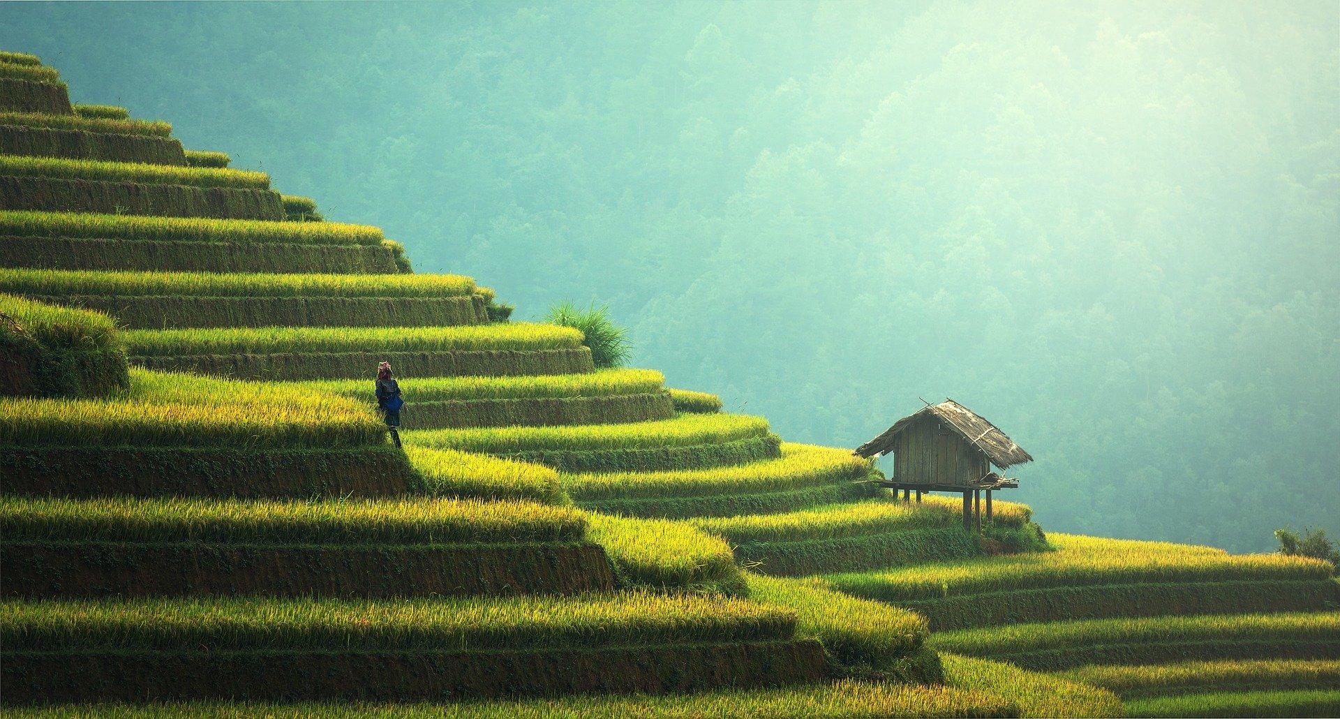 Viaggio in solitaria in Thailandia