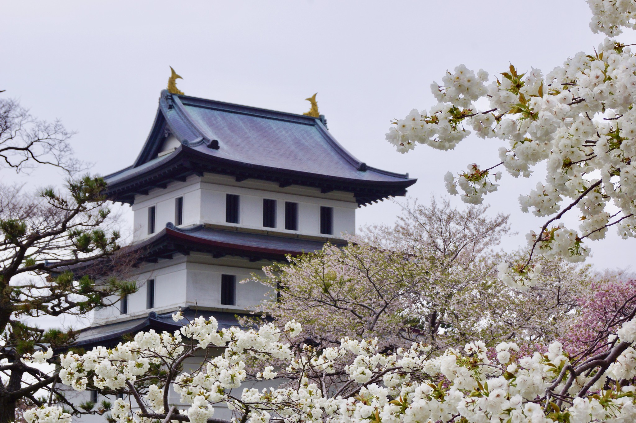 Castello di Matsumae