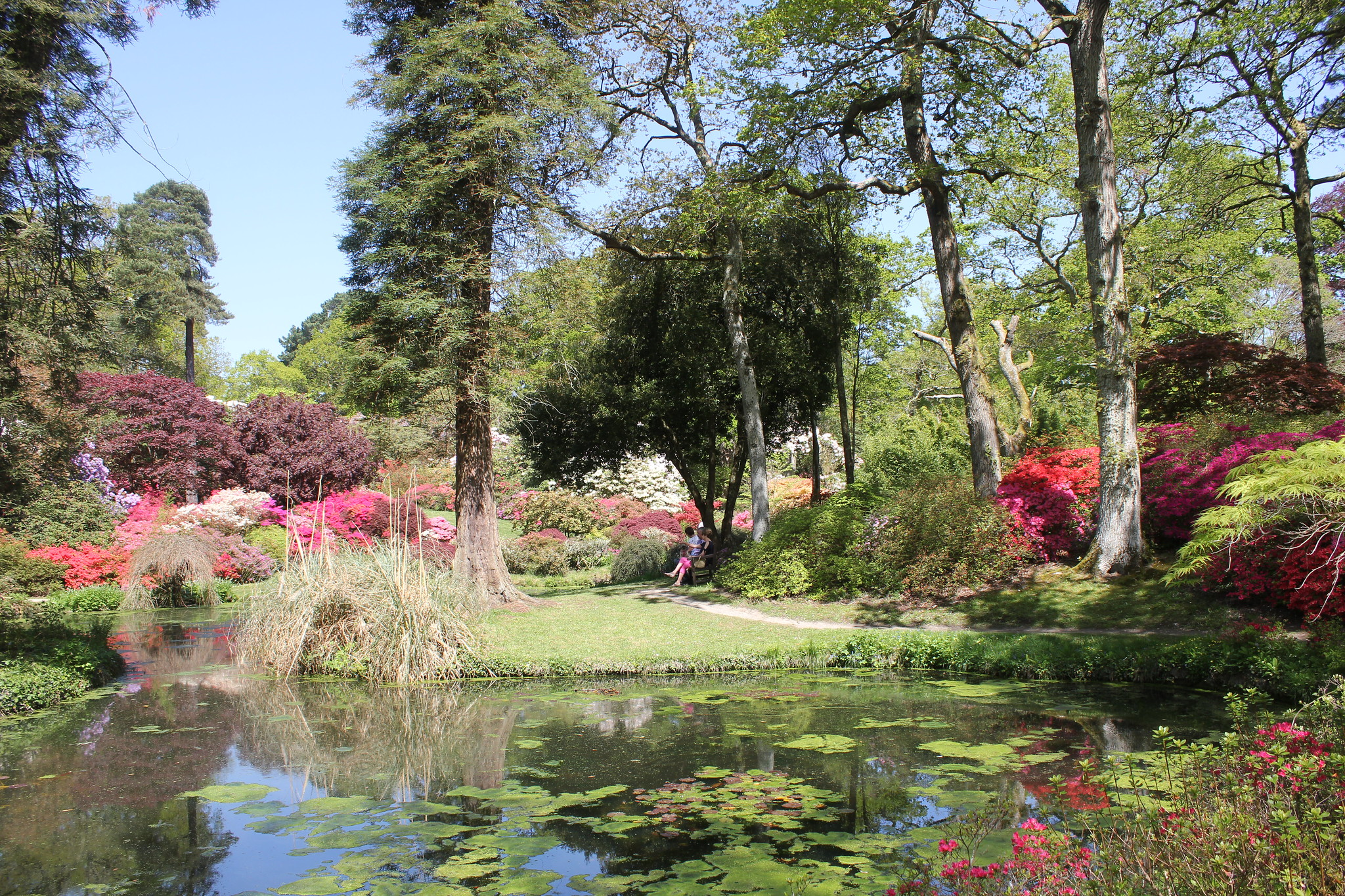 giardino segreto hampshire