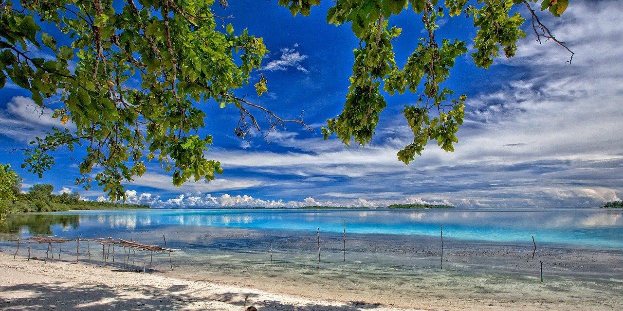 isola kura kura indonesia