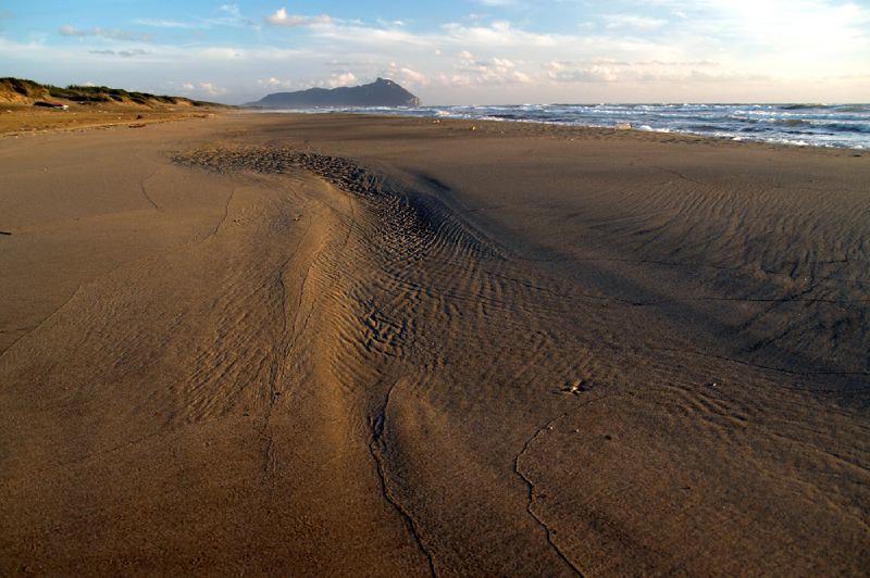 duna Litoranea