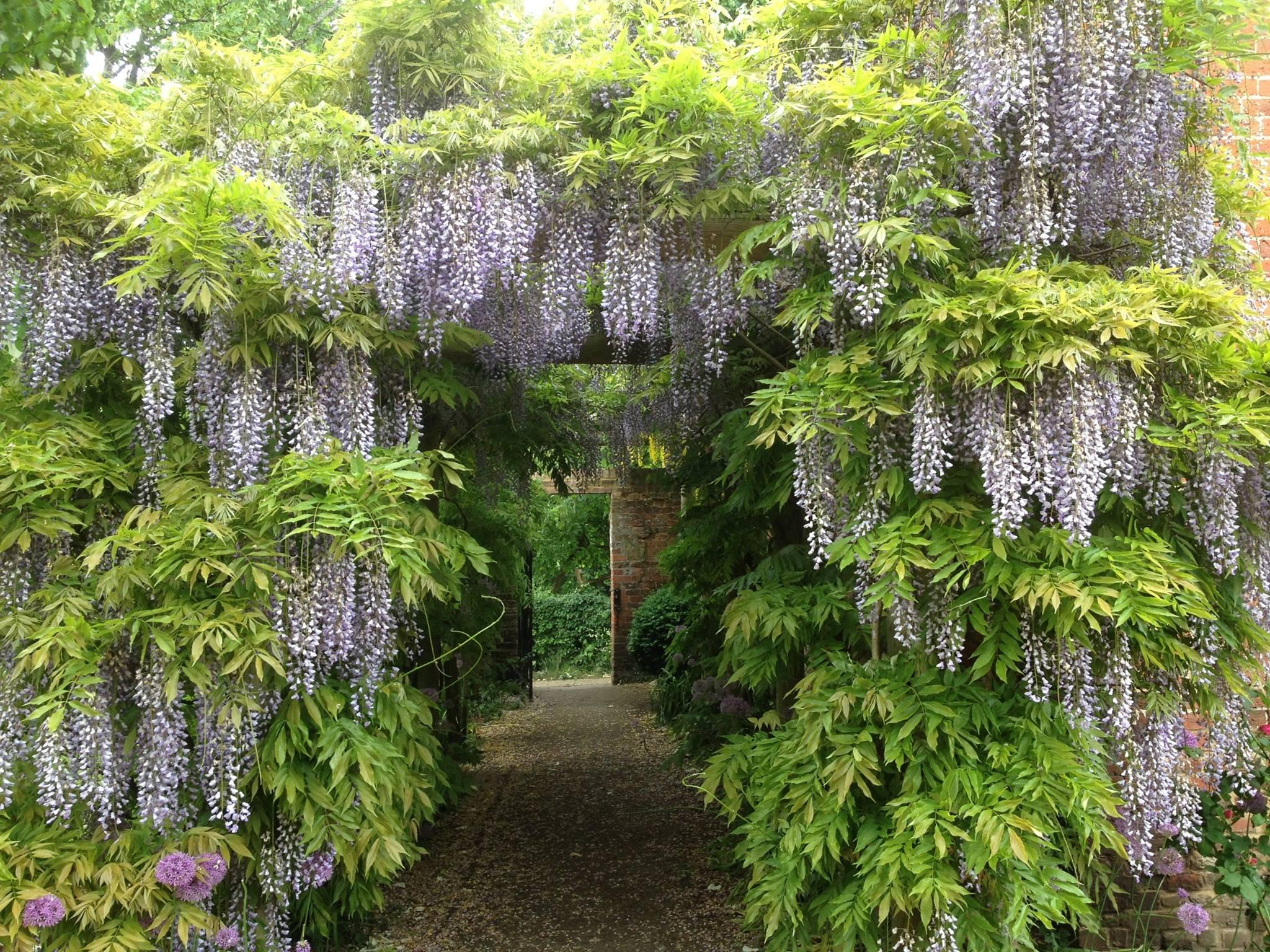 Eastcote Gardens