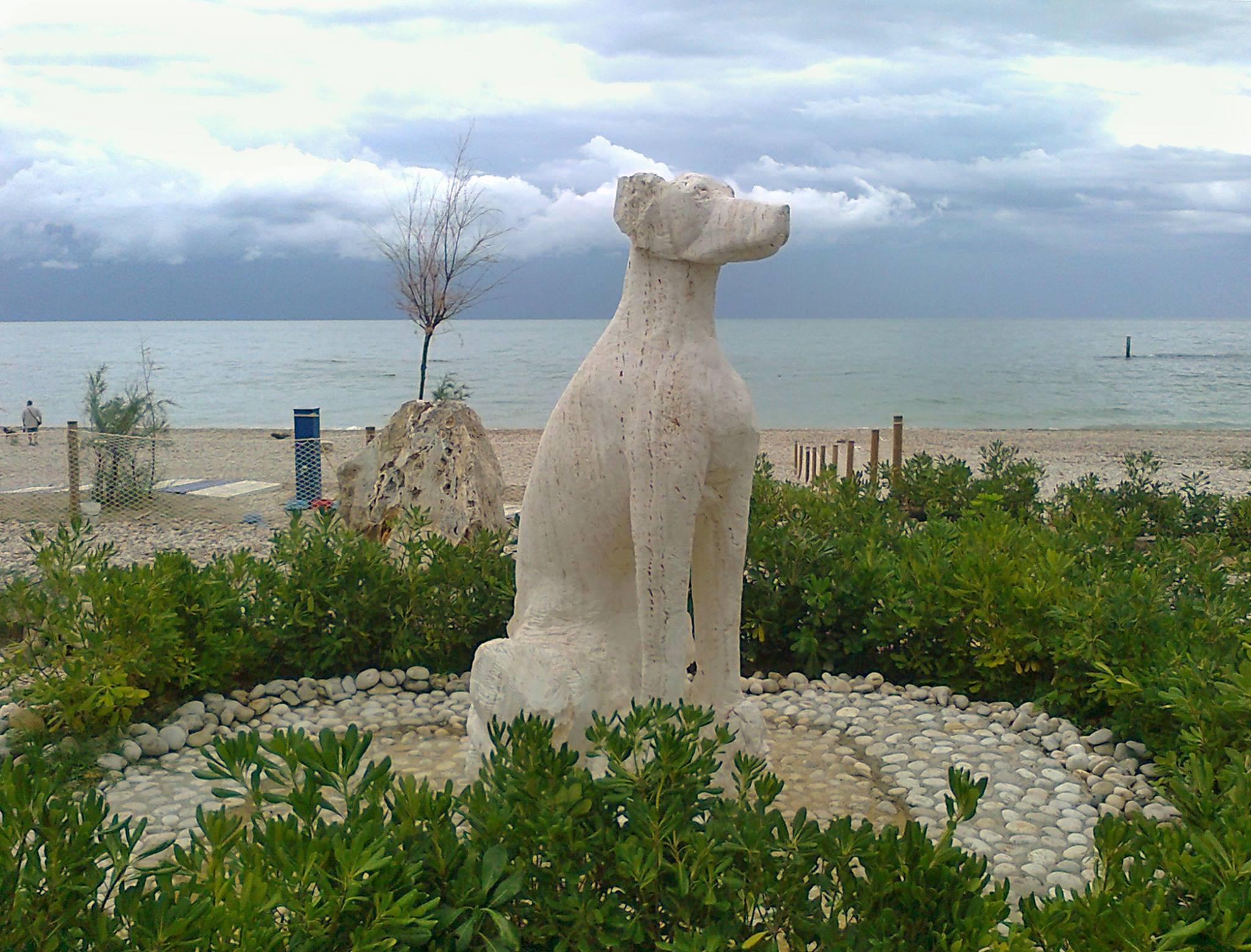 grottammare spiaggia per cani