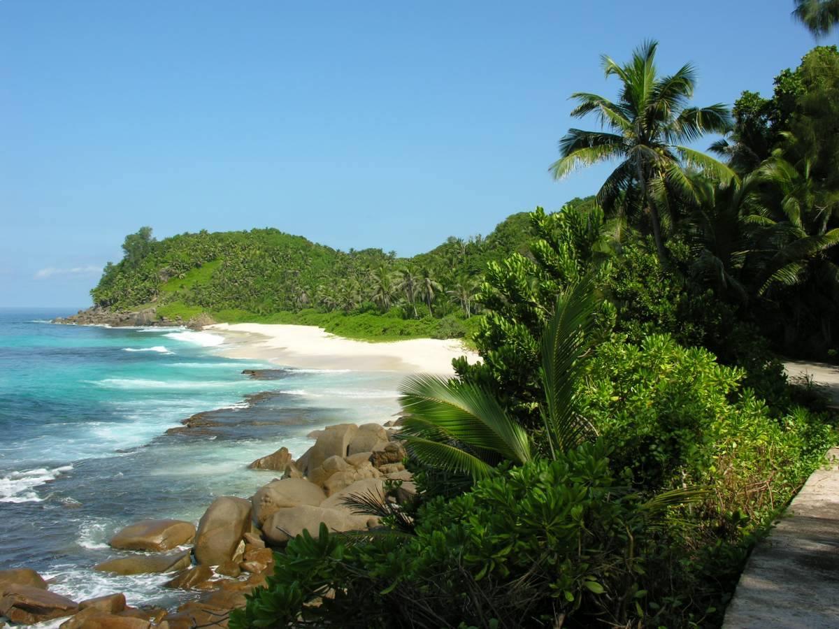 isole amirantes seychelles