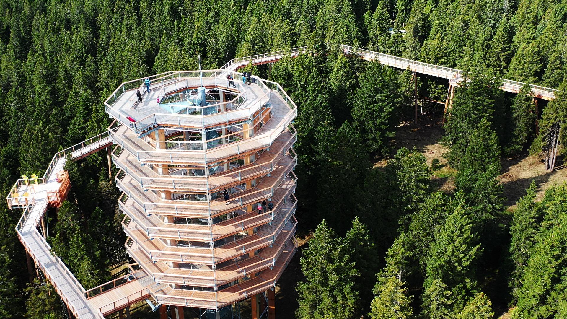 torre sugli alberi slovenia