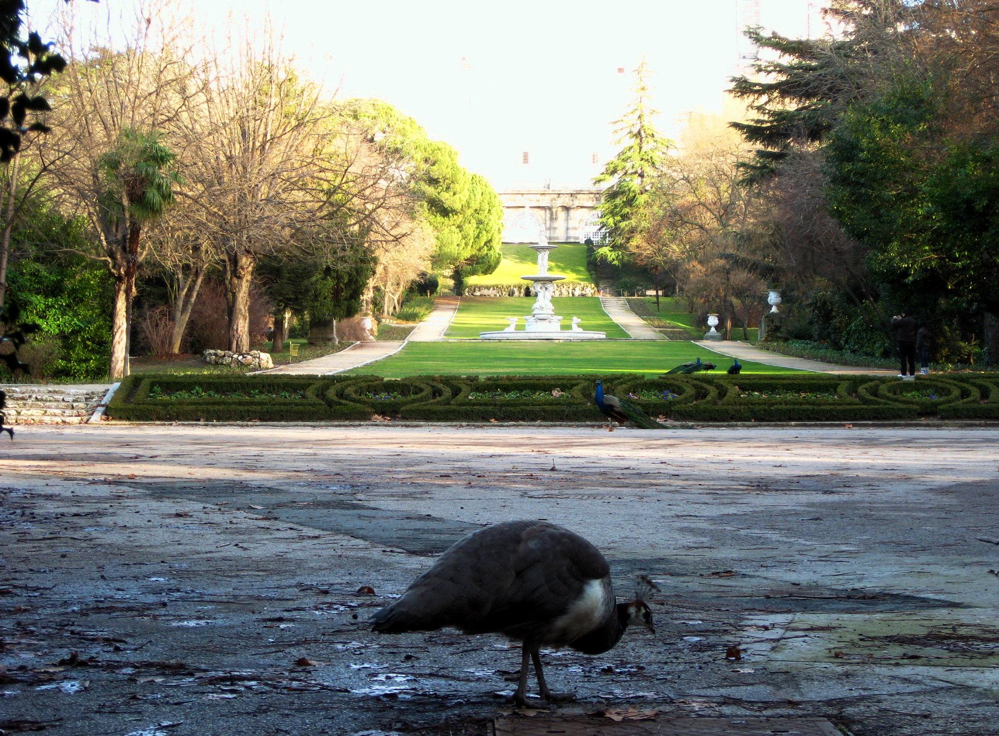 giardino botanico reale madrid