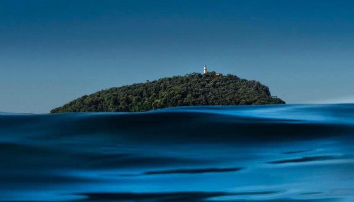 isola del tino visita
