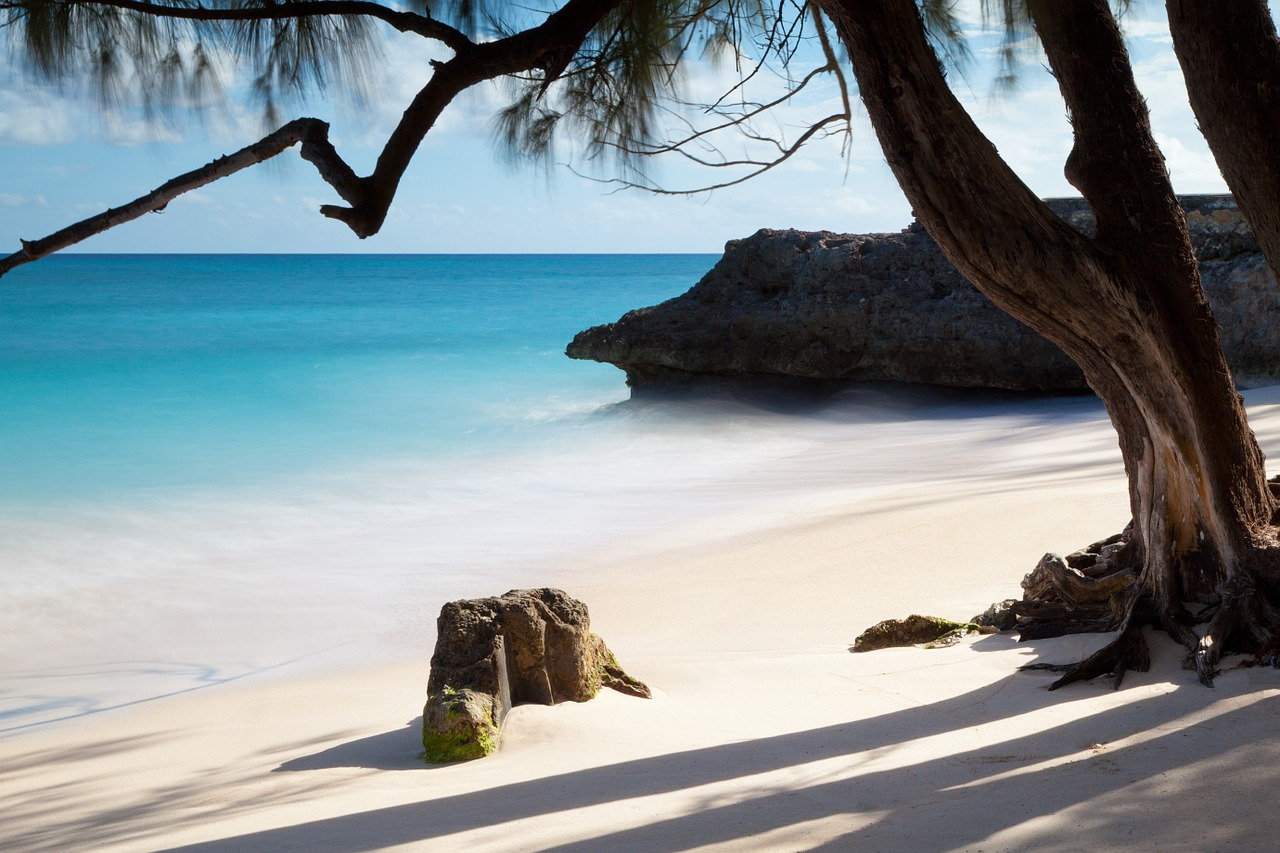 isole barbados smart working