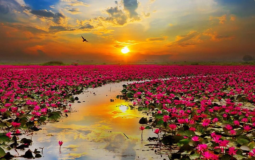 Lago thailandia