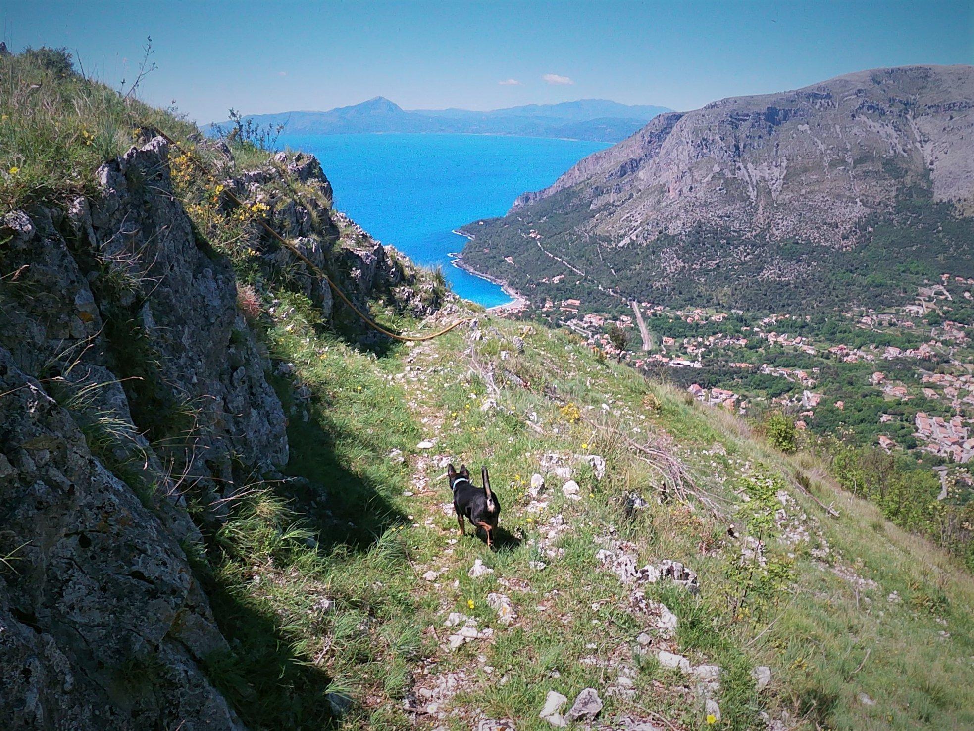 sentiero del mediterraneo maratea