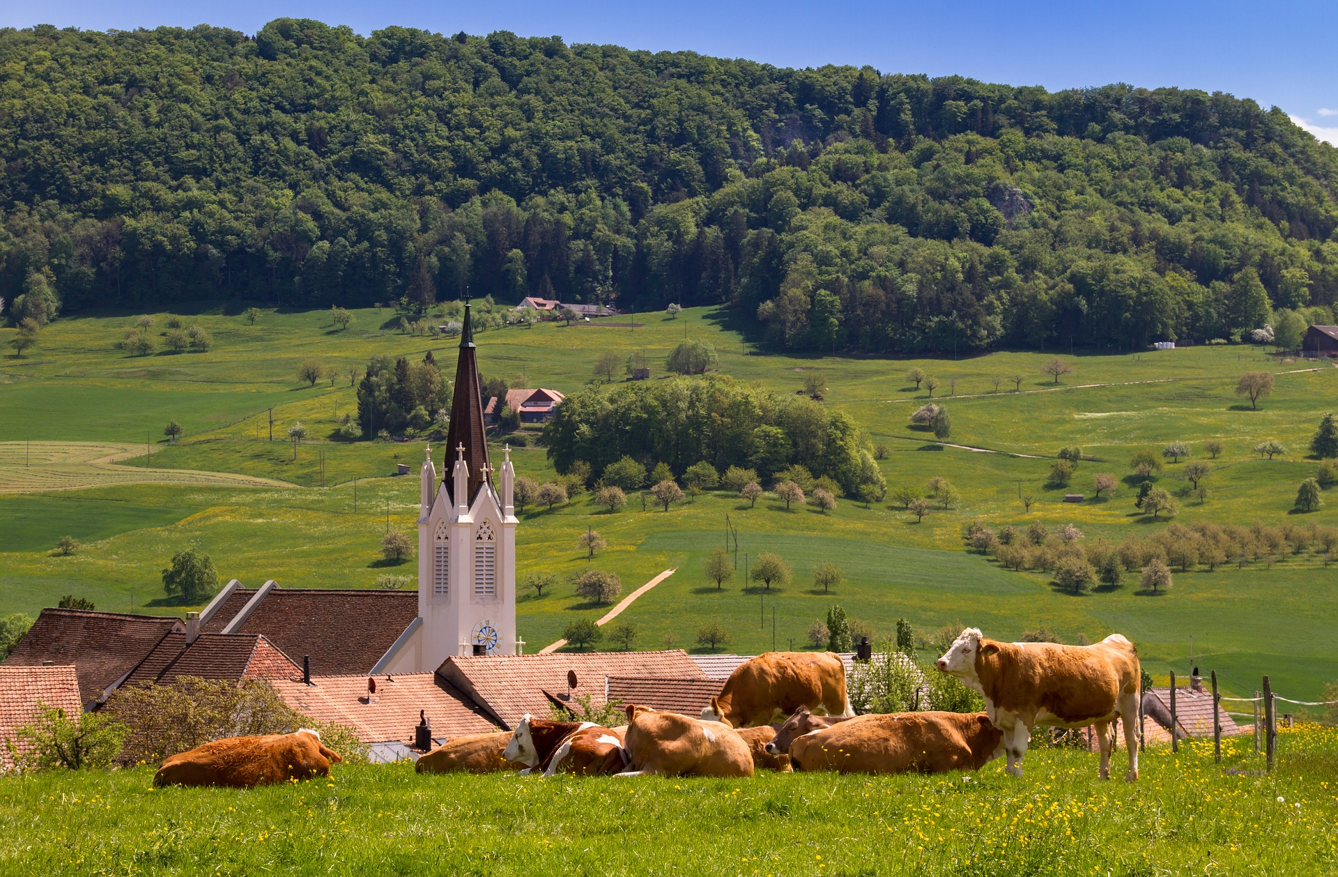 kilchberg svizzera
