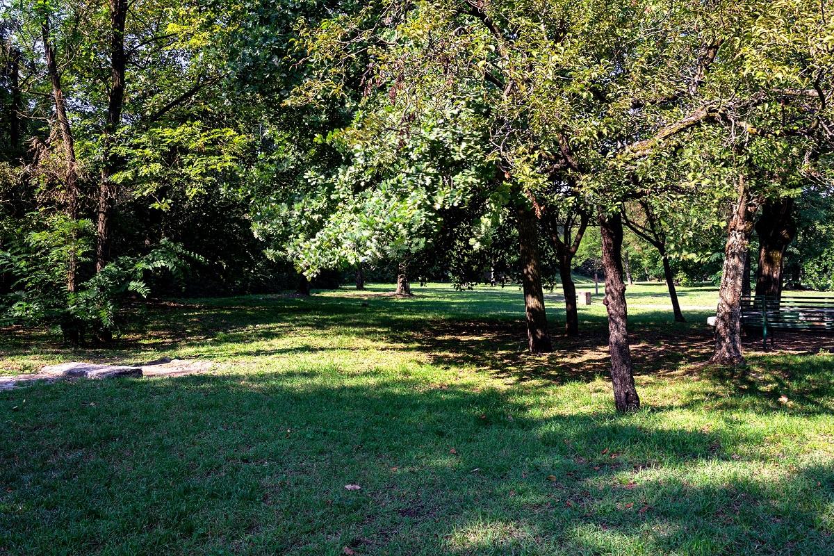 Parco della Galleana storia