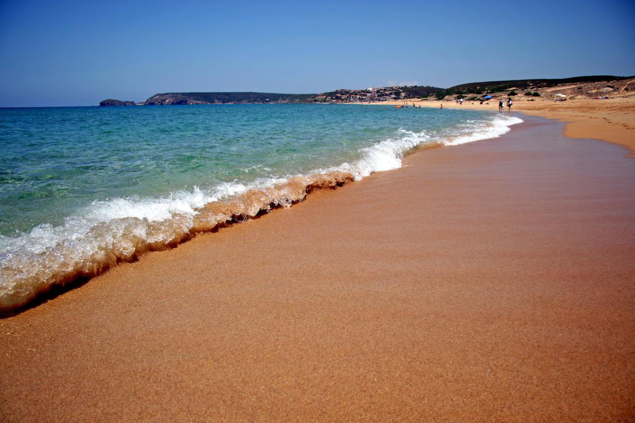 spiaggia per cani torre dei corsari