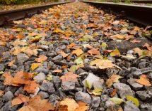 Trenino del foliage 2020